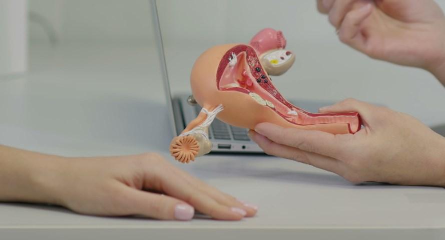 Гинекология шейка матки