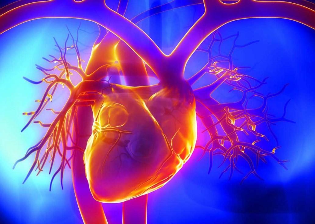 КТ сердца